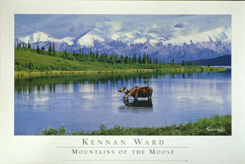 1033  Mountains Of The  Moose