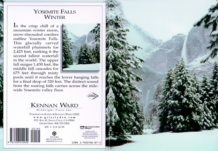 295 Yosemite Falss Winter