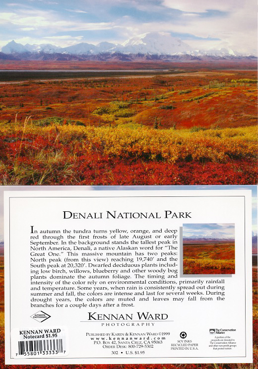 302 Denali Fall Colors