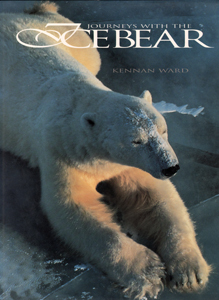 57752 Ice Bear Web Book Print